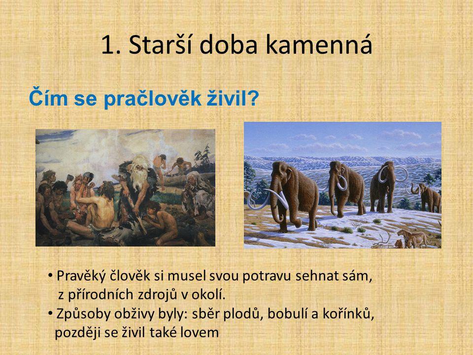 1. Starší doba kamenná Čím se pračlověk živil