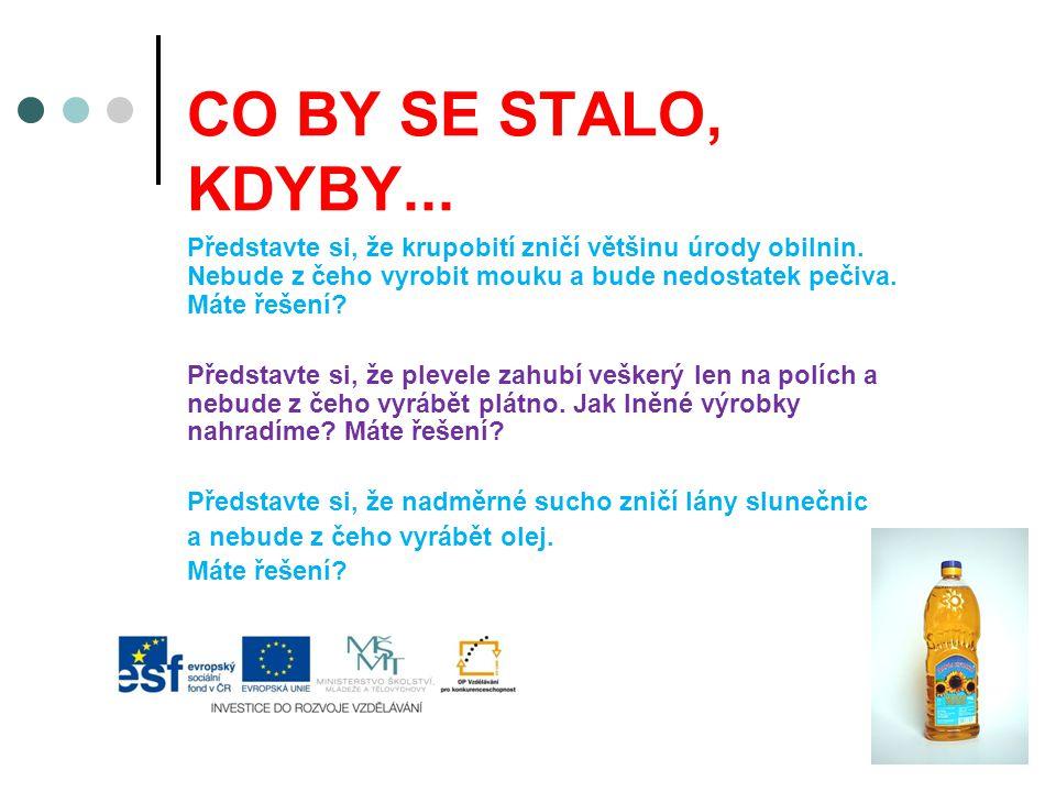 CO BY SE STALO, KDYBY...