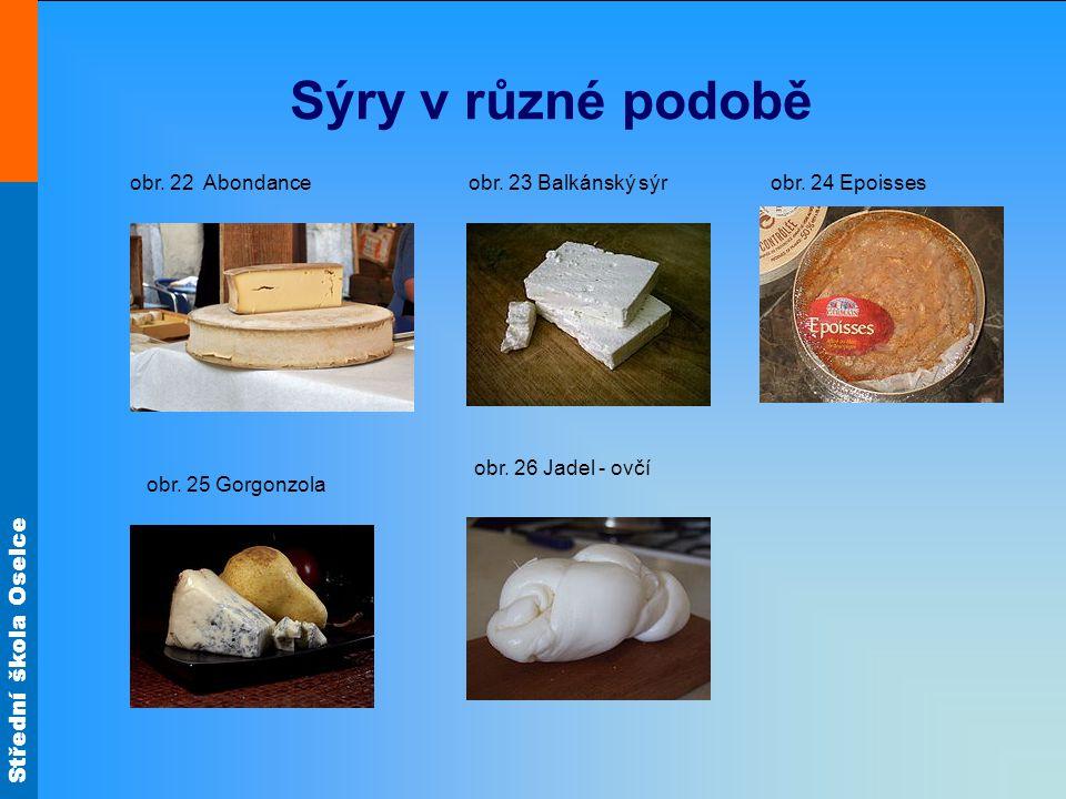 Sýry v různé podobě obr. 22 Abondance obr. 23 Balkánský sýr