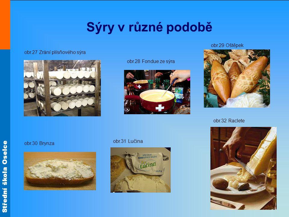 Sýry v různé podobě obr.29 Oštěpek obr.27 Zrání plísňového sýra