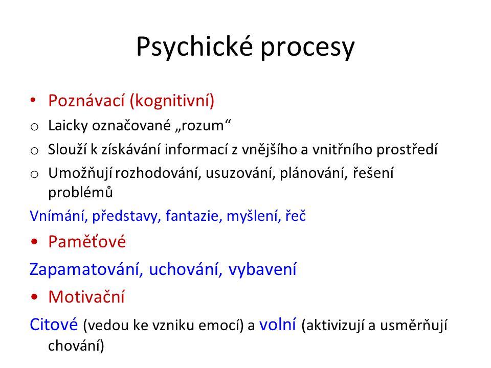 Psychické procesy Poznávací (kognitivní) Paměťové