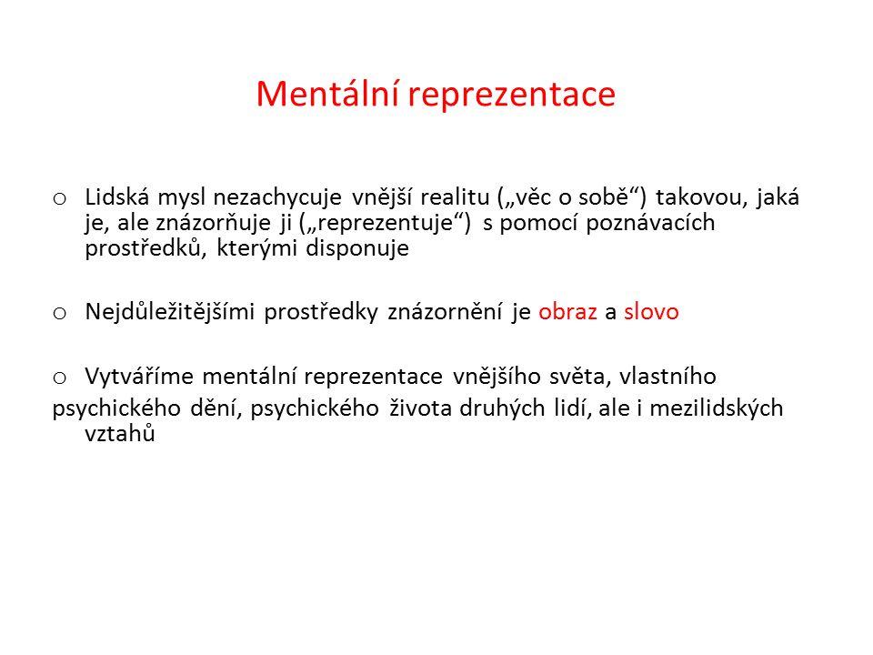 Mentální reprezentace