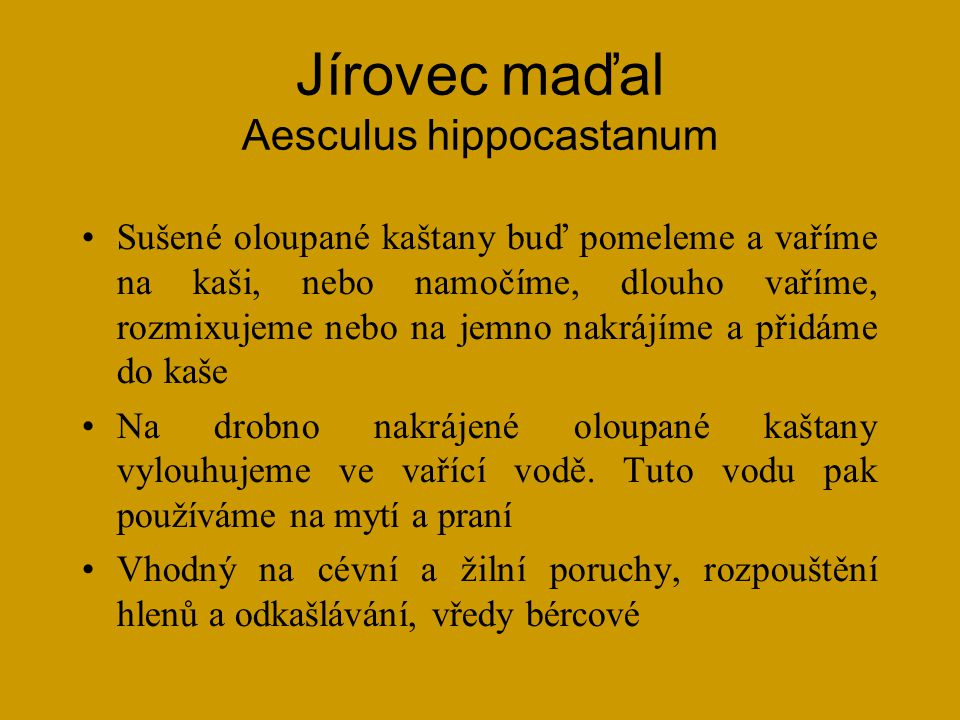 Jírovec maďal Aesculus hippocastanum