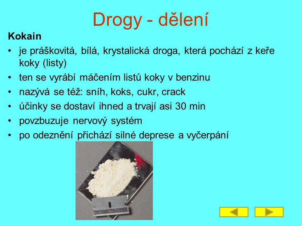 Drogy - dělení Kokain. je práškovitá, bílá, krystalická droga, která pochází z keře koky (listy) ten se vyrábí máčením listů koky v benzinu.