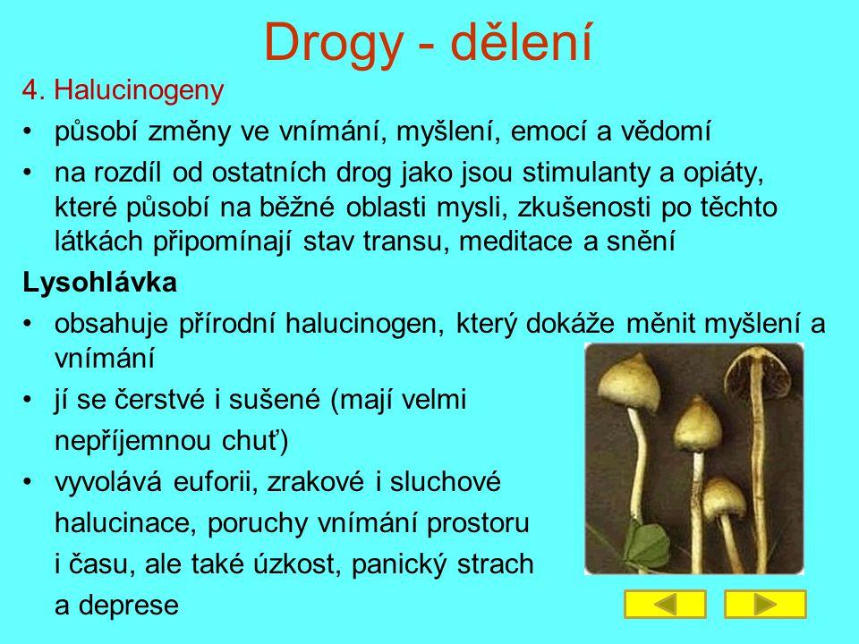 Drogy - dělení 4. Halucinogeny