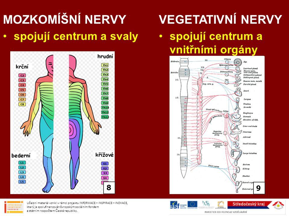 MOZKOMÍŠNÍ NERVY VEGETATIVNÍ NERVY spojují centrum a svaly