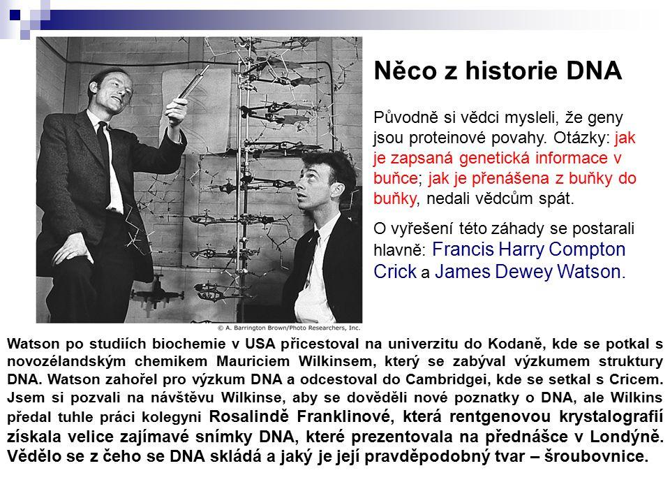 Něco z historie DNA
