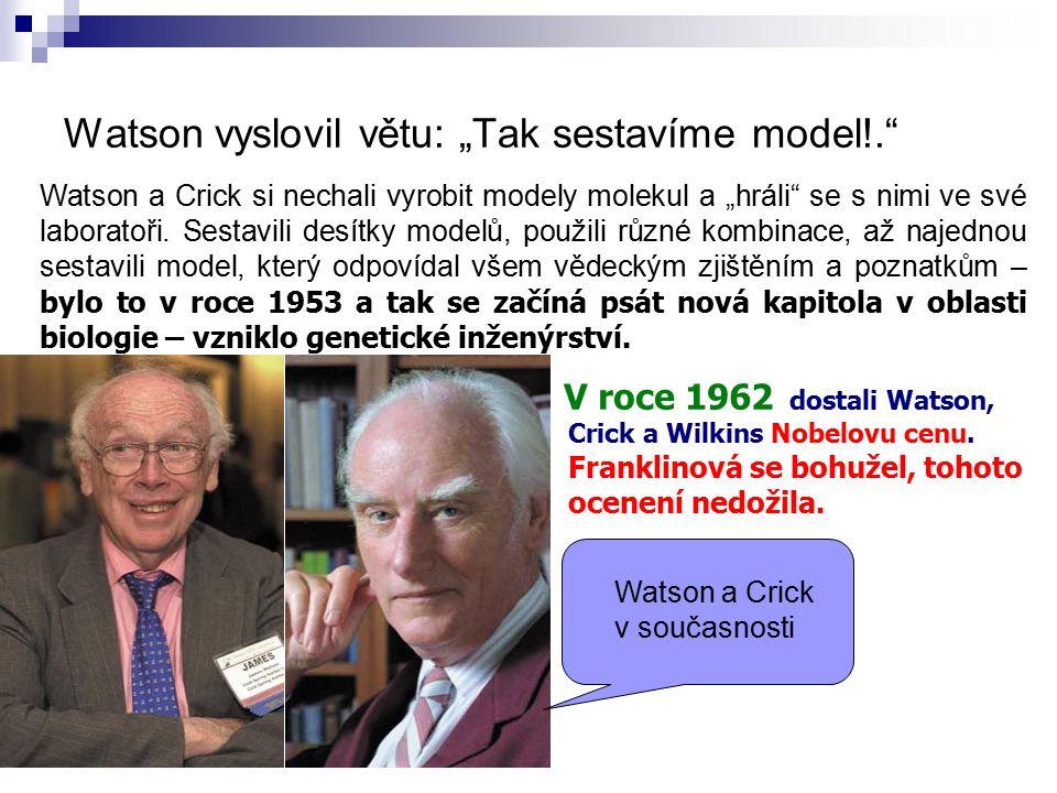 """Watson vyslovil větu: """"Tak sestavíme model!."""