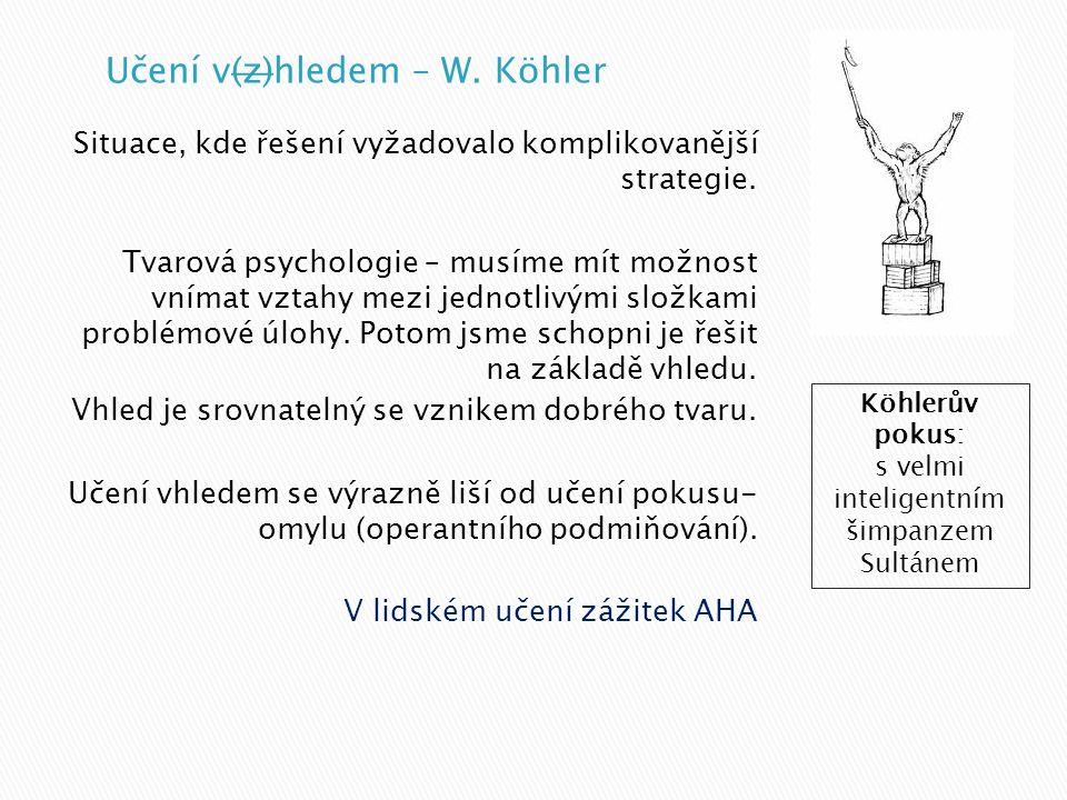 Učení v(z)hledem – W. Köhler