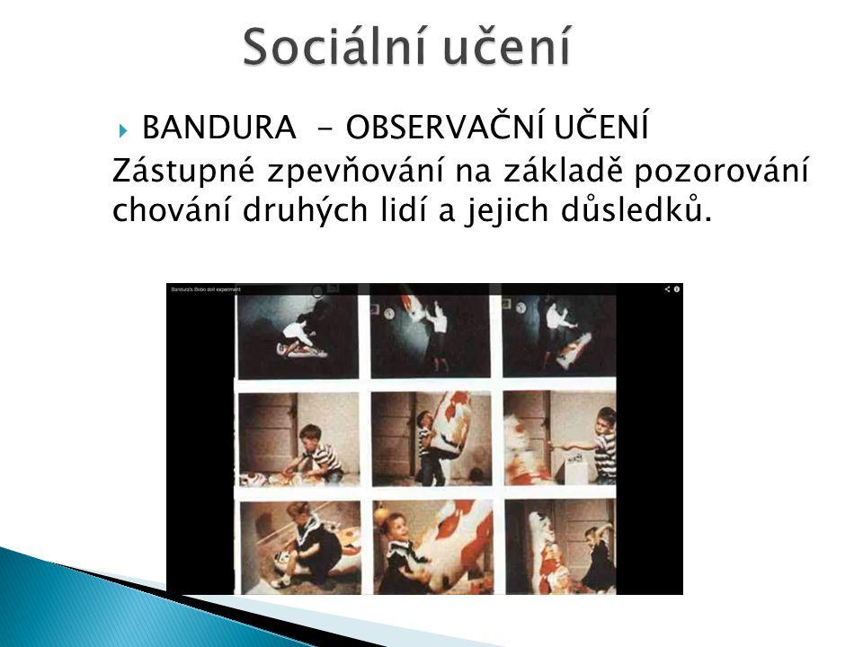Sociální učení BANDURA - OBSERVAČNÍ UČENÍ