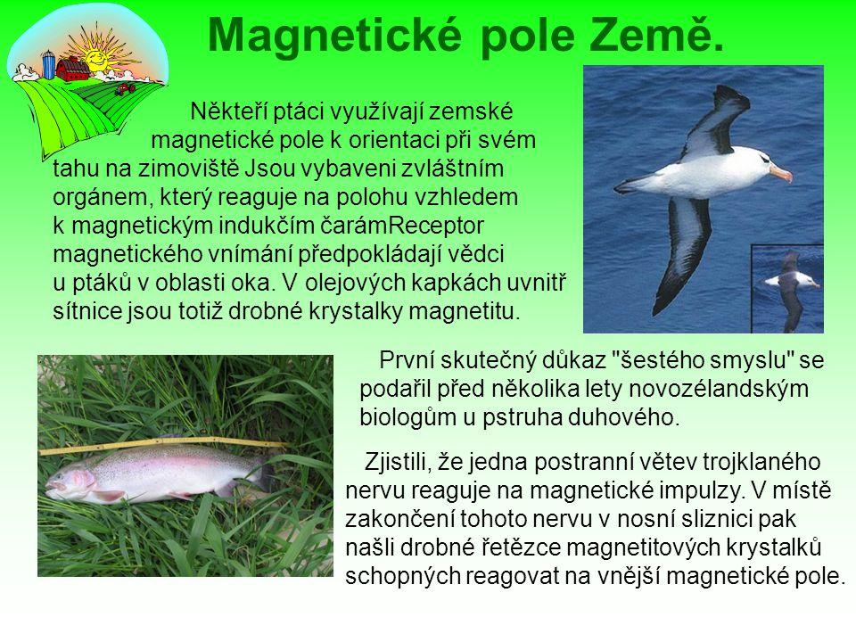 Magnetické pole Země.