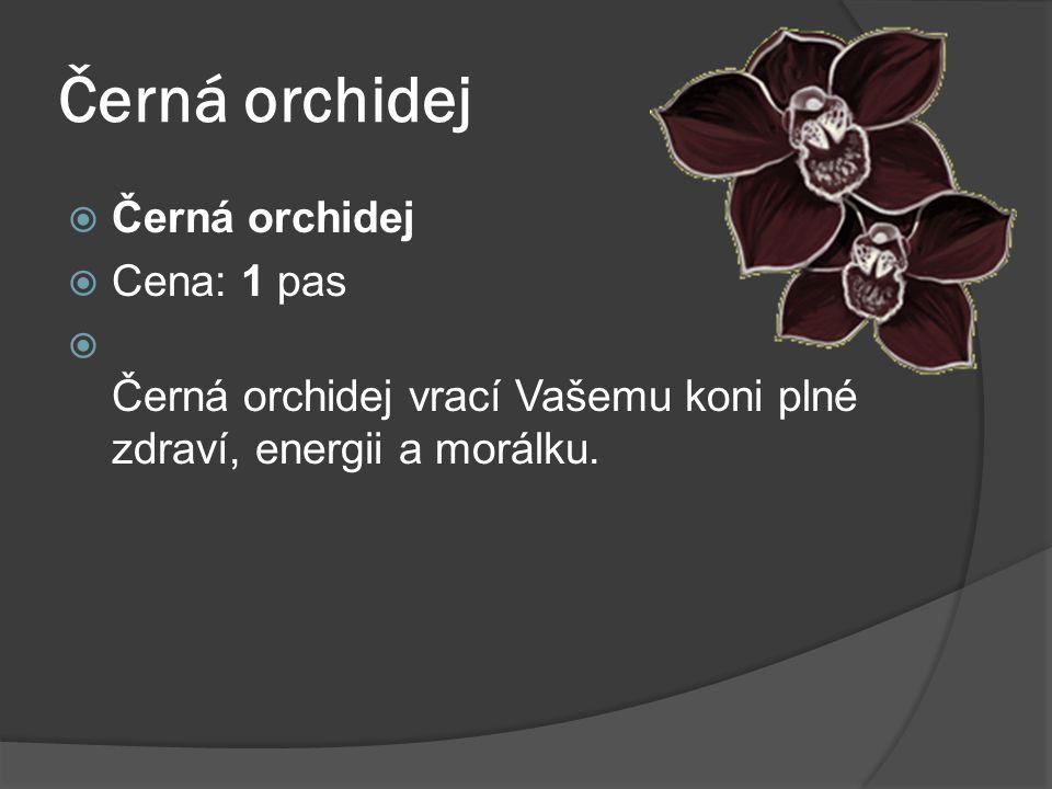Černá orchidej Černá orchidej Cena: 1 pas