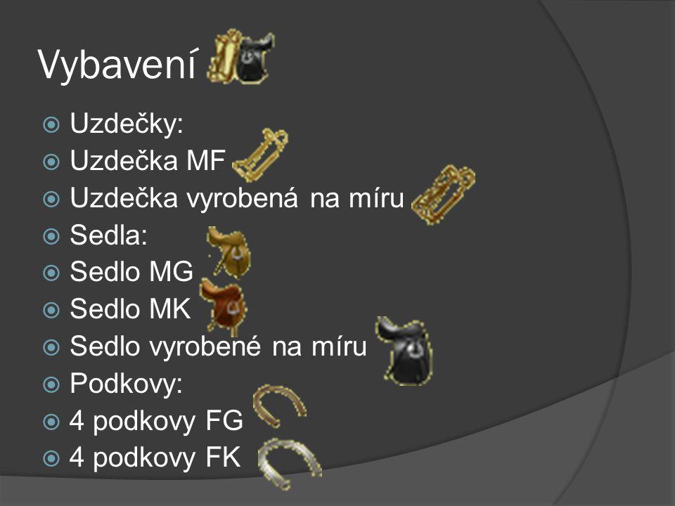 Vybavení Uzdečky: Uzdečka MF Uzdečka vyrobená na míru Sedla: Sedlo MG