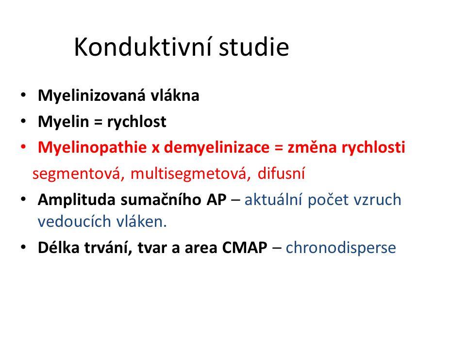 Konduktivní studie Myelinizovaná vlákna Myelin = rychlost