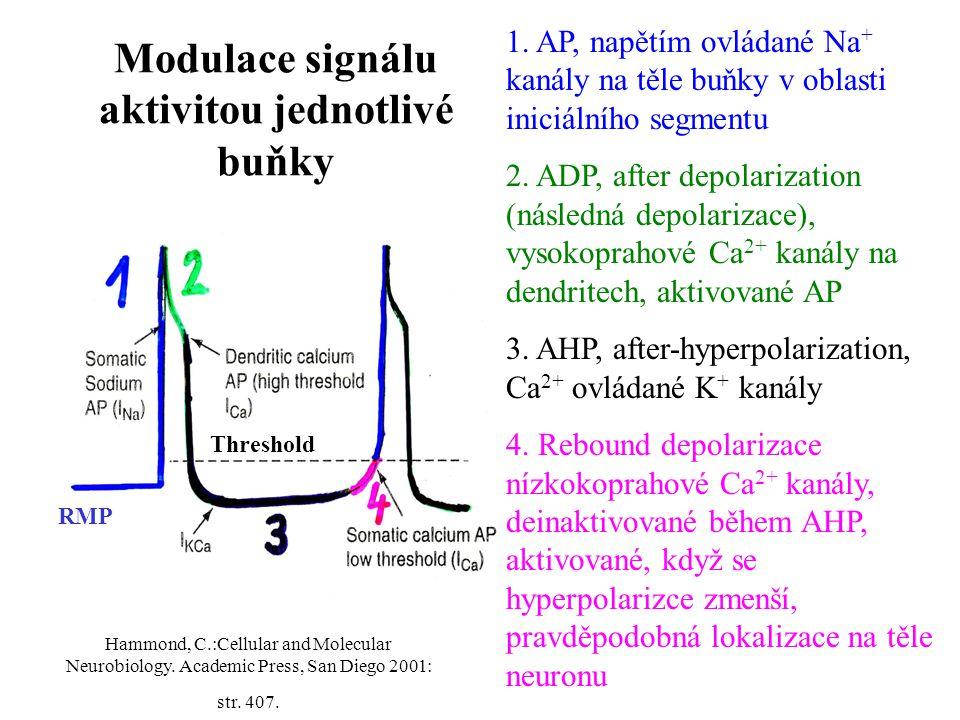 Modulace signálu aktivitou jednotlivé buňky