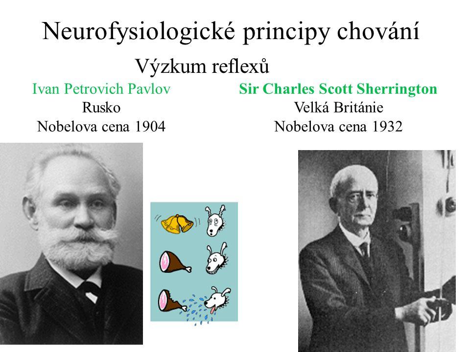 Neurofysiologické principy chování