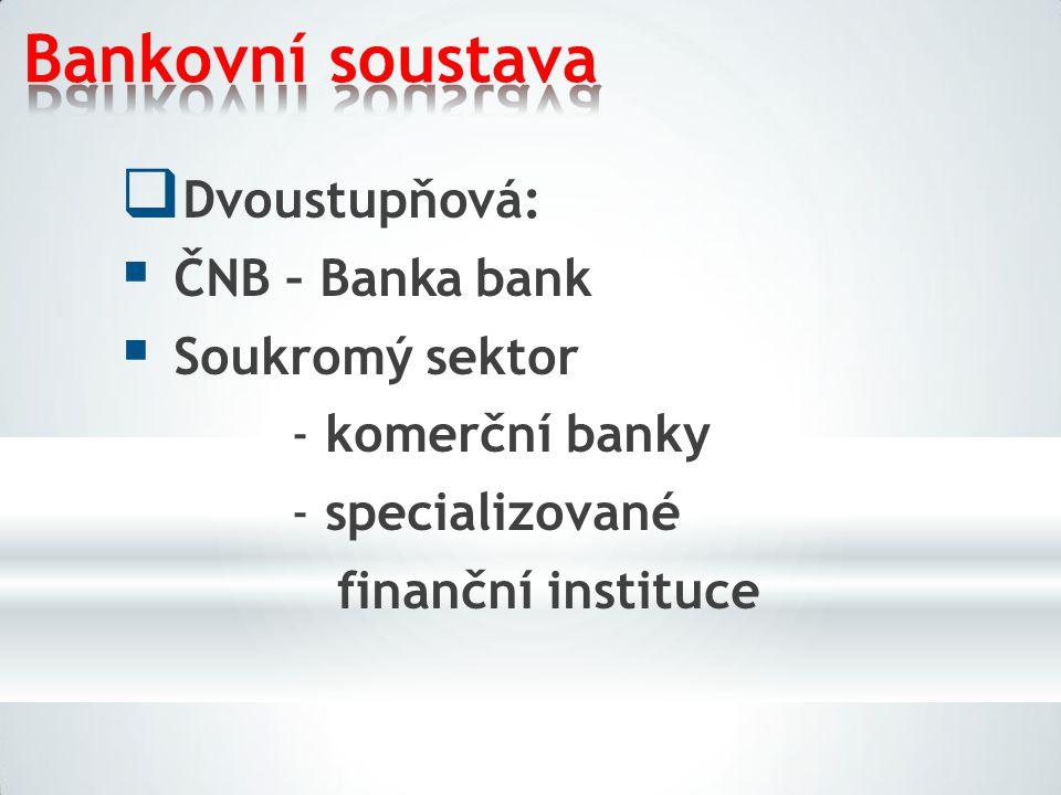 Bankovní soustava Dvoustupňová: ČNB – Banka bank Soukromý sektor