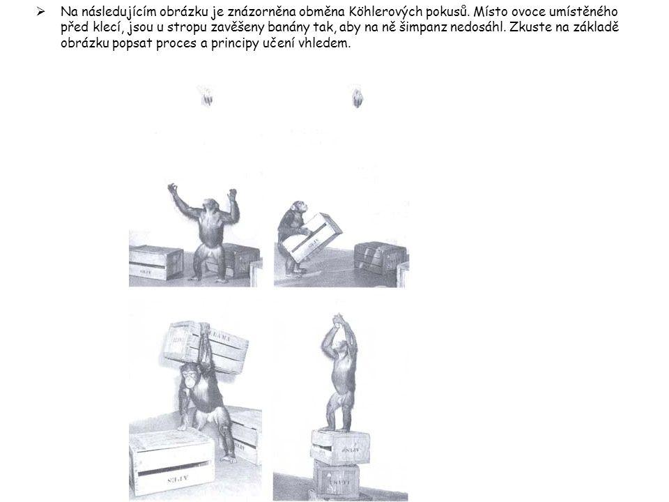 Na následujícím obrázku je znázorněna obměna Köhlerových pokusů