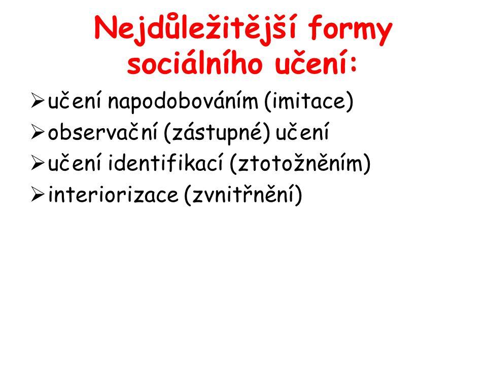Nejdůležitější formy sociálního učení: