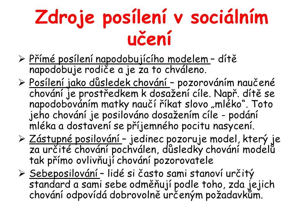 Zdroje posílení v sociálním učení