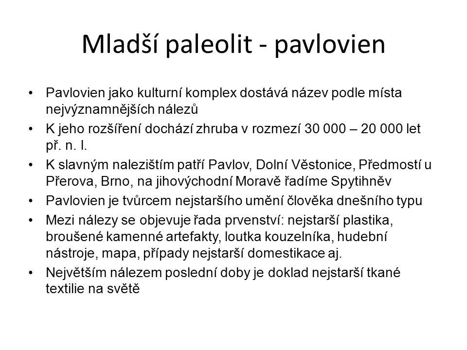 Mladší paleolit - pavlovien