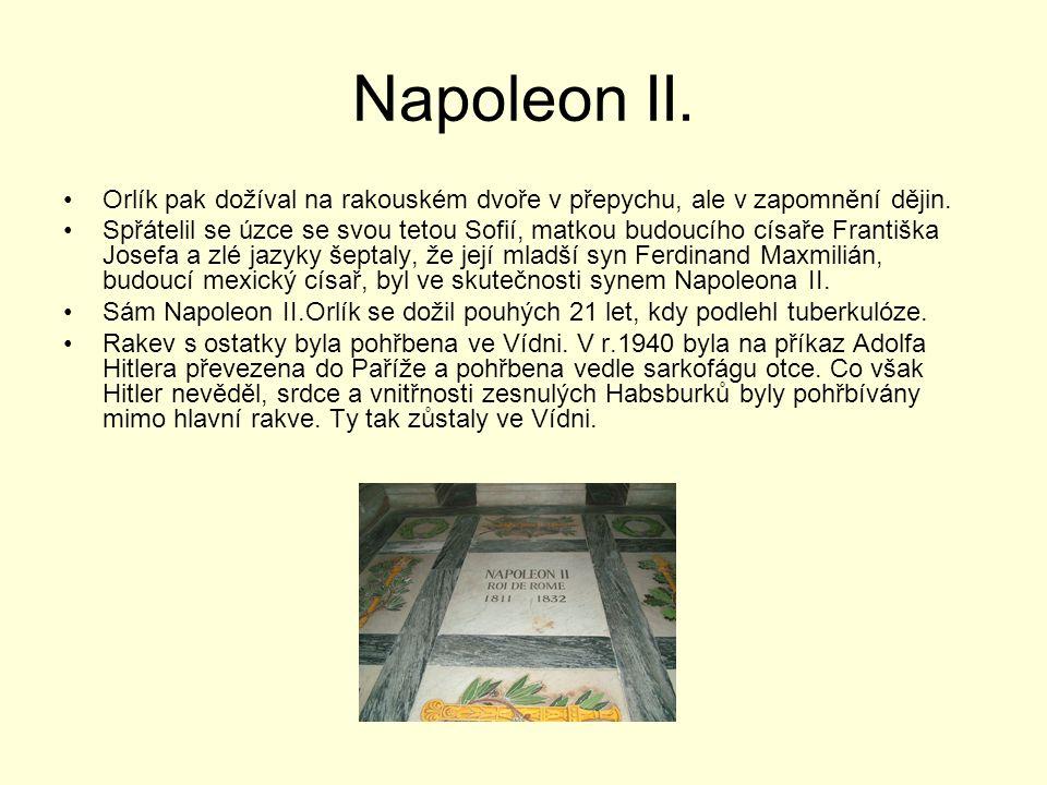 Napoleon II. Orlík pak dožíval na rakouském dvoře v přepychu, ale v zapomnění dějin.
