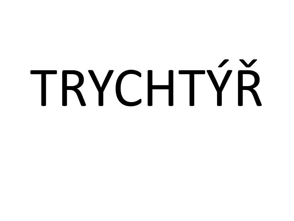 TRYCHTÝŘ