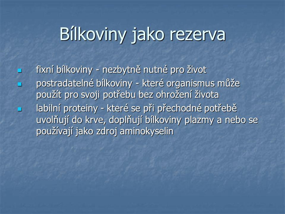 Bílkoviny jako rezerva