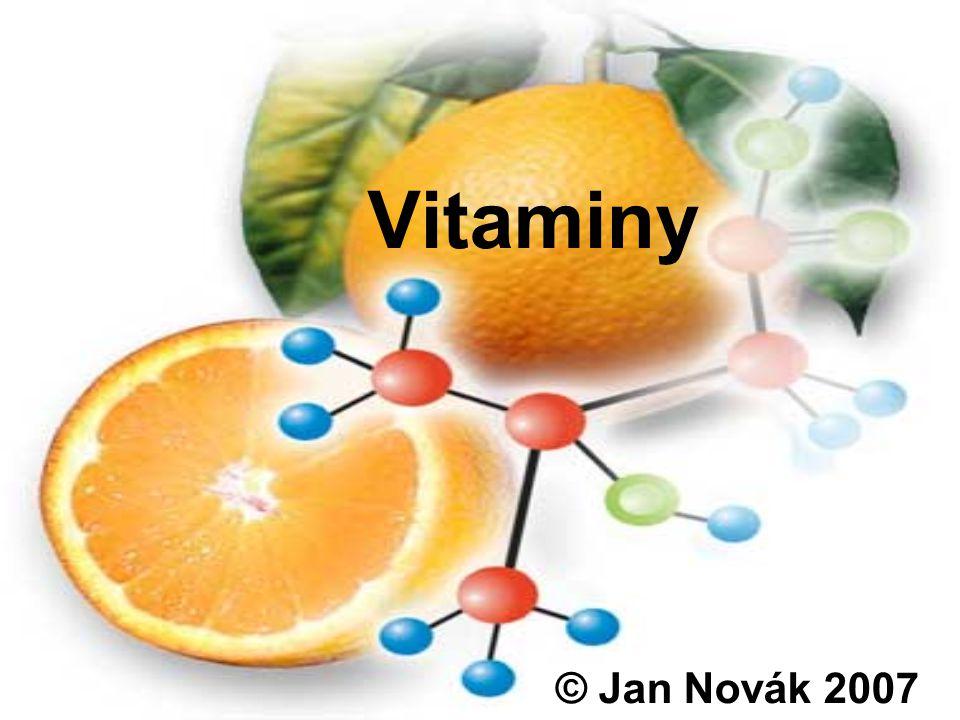 Vitaminy © Jan Novák 2007