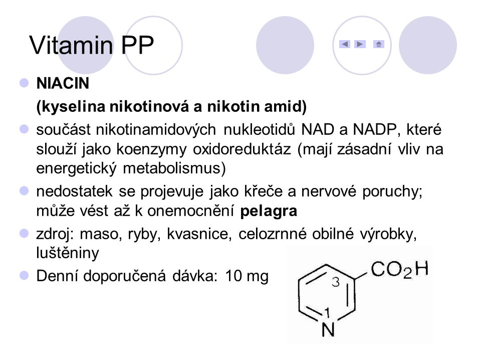 Vitamin PP NIACIN (kyselina nikotinová a nikotin amid)