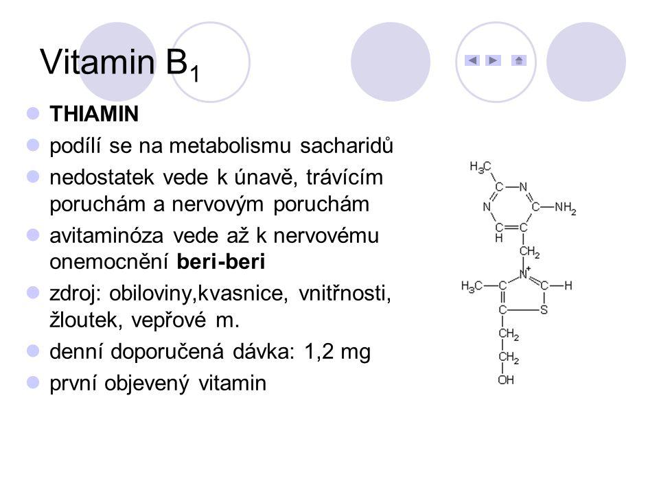 Vitamin B1 THIAMIN podílí se na metabolismu sacharidů