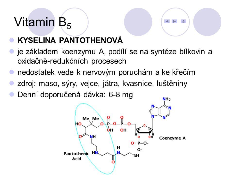Vitamin B5 KYSELINA PANTOTHENOVÁ