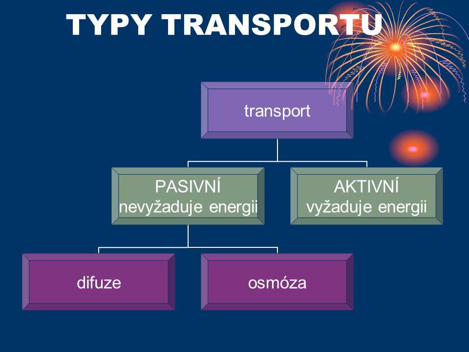 TYPY TRANSPORTU