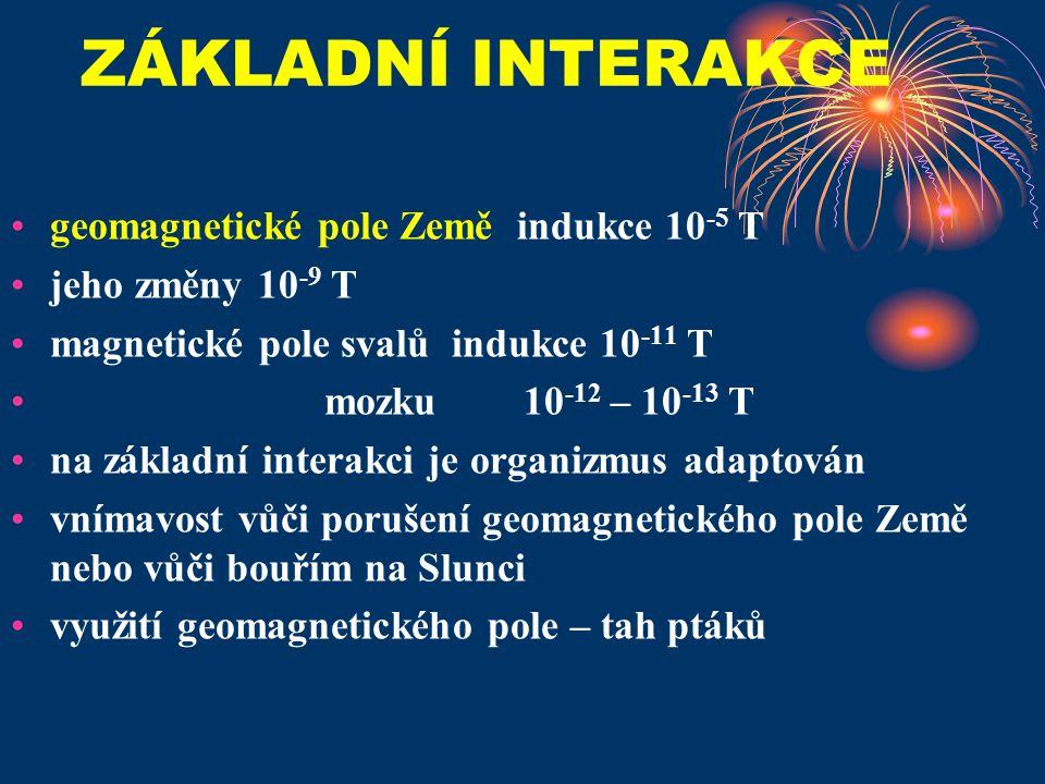 ZÁKLADNÍ INTERAKCE geomagnetické pole Země indukce 10-5 T