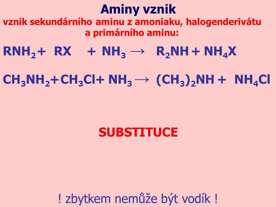 vznik sekundárního aminu z amoniaku, halogenderivátu