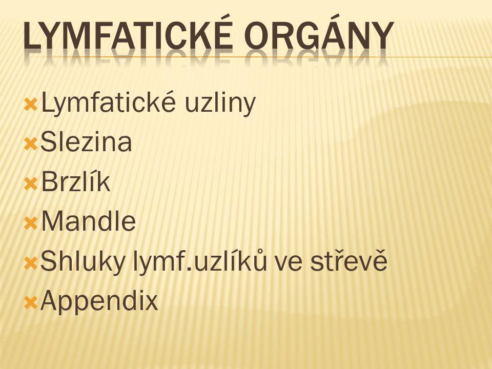 Lymfatické orgány Lymfatické uzliny Slezina Brzlík Mandle