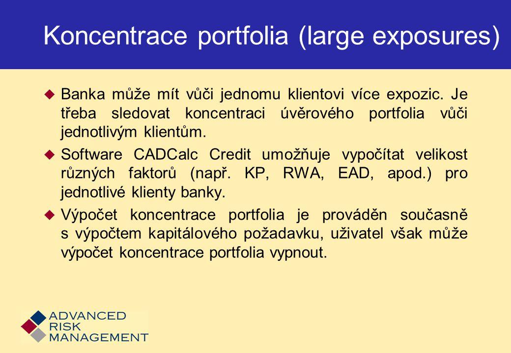 Koncentrace portfolia (large exposures)
