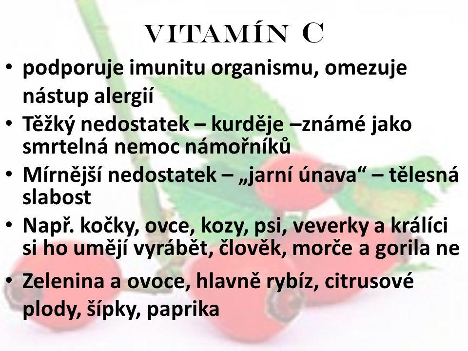 Vitamín C podporuje imunitu organismu, omezuje nástup alergií