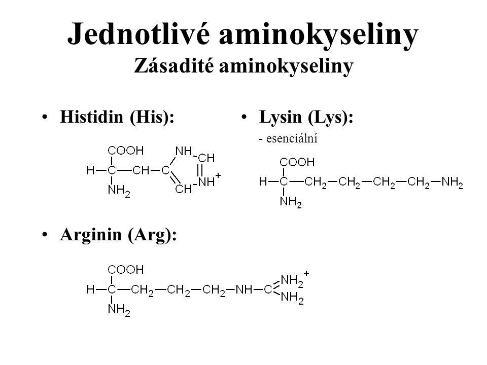 Jednotlivé aminokyseliny Zásadité aminokyseliny