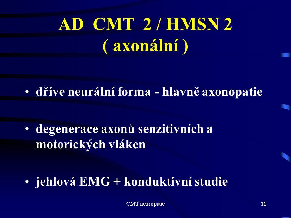 AD CMT 2 / HMSN 2 ( axonální )