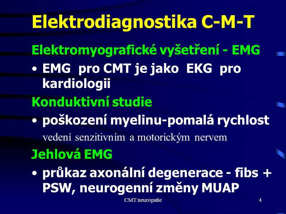 Elektrodiagnostika C-M-T