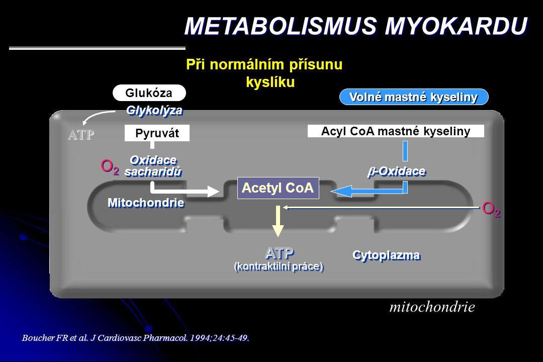 Při normálním přísunu kyslíku Acyl CoA mastné kyseliny