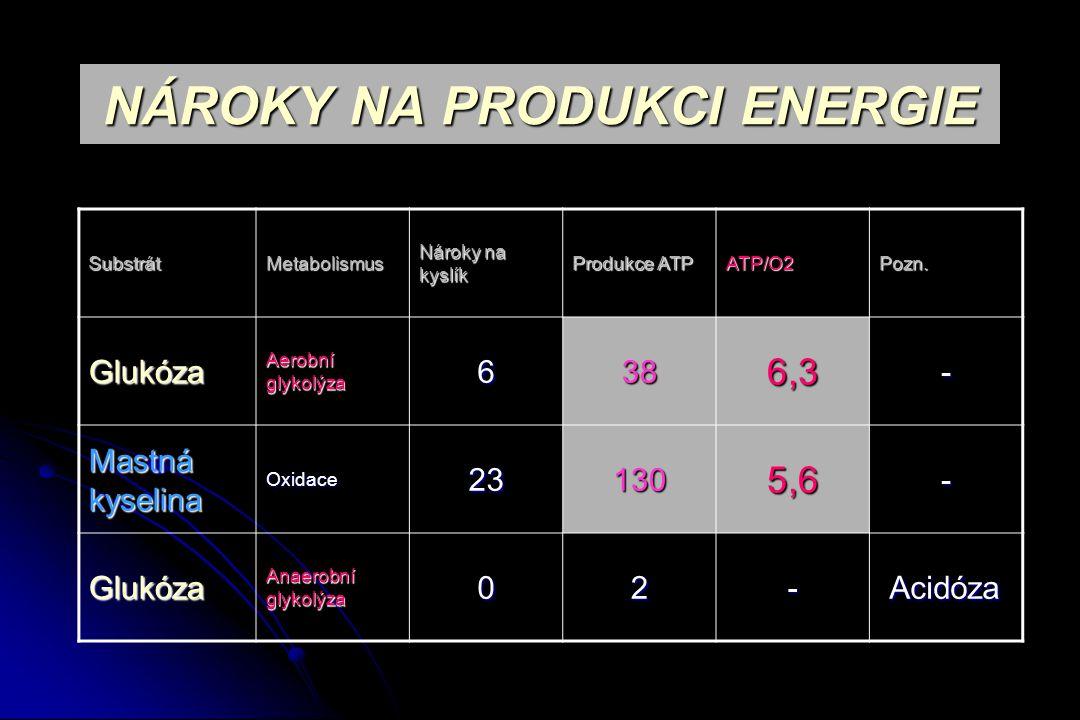 NÁROKY NA PRODUKCI ENERGIE