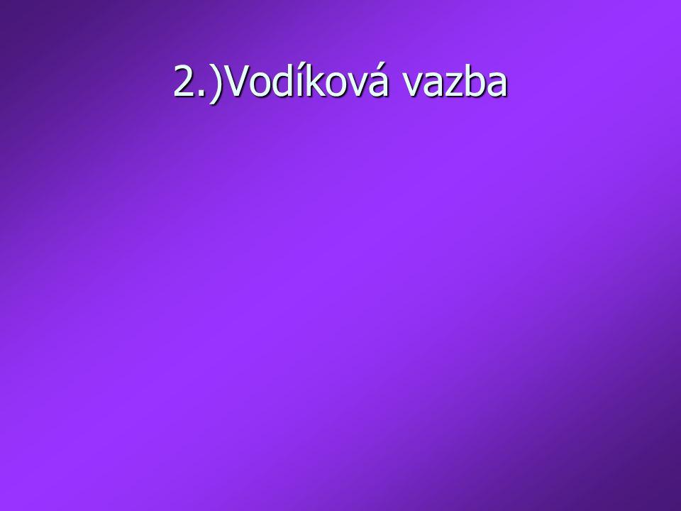 2.)Vodíková vazba