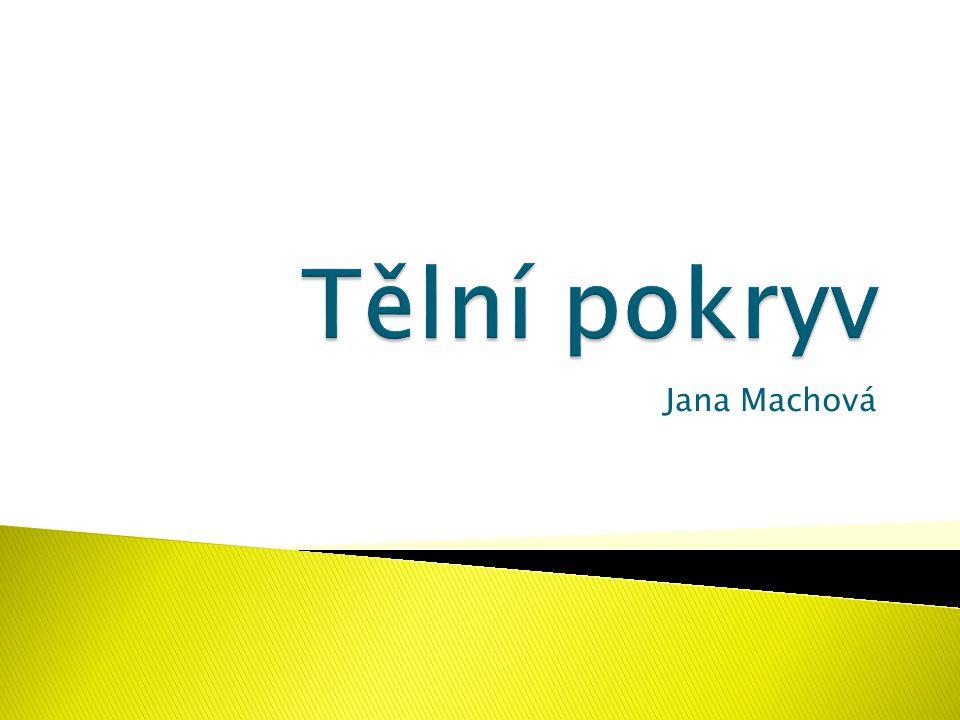 Tělní pokryv Jana Machová