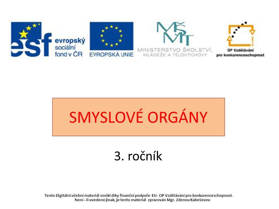 SMYSLOVÉ ORGÁNY 3. ročník