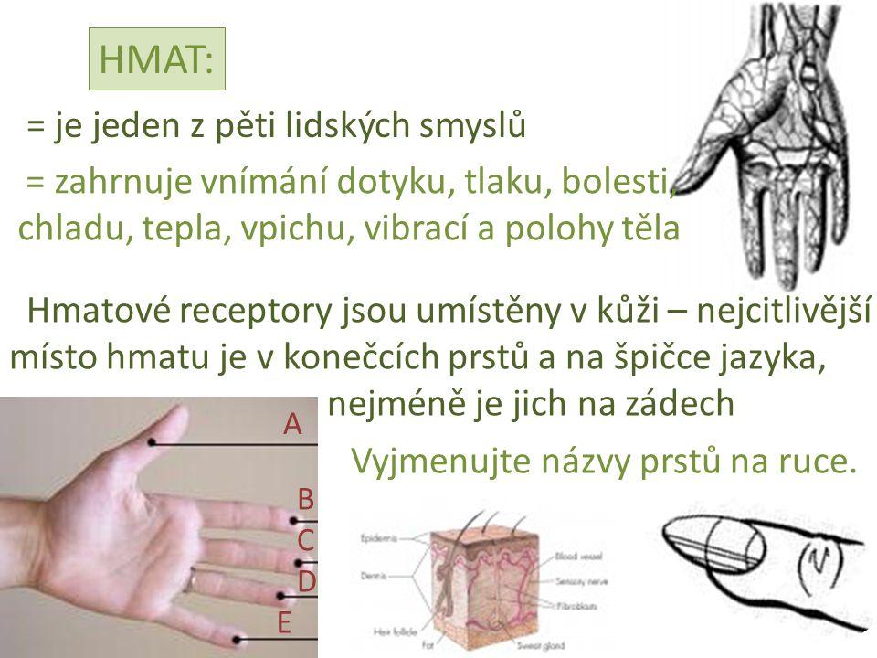 HMAT: = je jeden z pěti lidských smyslů