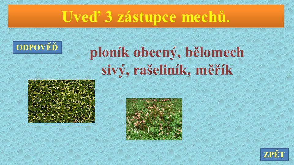 ploník obecný, bělomech sivý, rašeliník, měřík