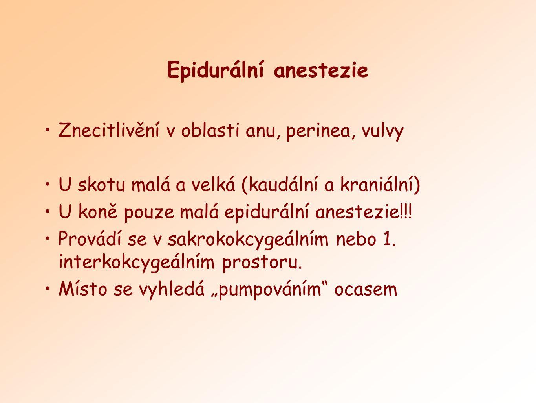 Epidurální anestezie Znecitlivění v oblasti anu, perinea, vulvy
