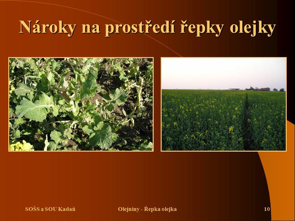 Nároky na prostředí řepky olejky Olejniny - Řepka olejka